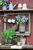 Bouquet of lilac in basket on wall above potted oregano and violas