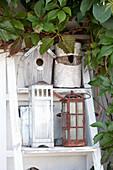 Bird nesting boxes and lanterns decoratively arrangement on shelves