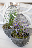 Wire, egg-shaped planters for Easter arrangements