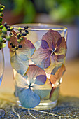 Windlicht mit getrockneten und gepressten Hortensienblüten