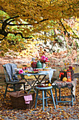 A table laid under a tree in an autumnal garden