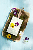 Wooden board on moss bed with pansies