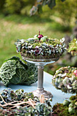 Autumn wreath made of moss, hydrangea blossoms, Brussels sprouts, and onions on a silver bowl with a base