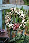 Herbstkranz aus Efeu, Fetthenne und Schneebeeren mit Tulpenzwiebeln