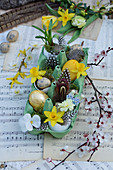 Small Easter decoration in an egg carton with daffodil flowers, grape hyacinth, Easter eggs and feathers