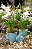 Grape hyacinths in enamelled cups, blue Easter bunny, Easter eggs and blossom branches