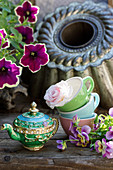 Teapot next to rose in cups, petunias and violas
