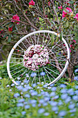 Wreath of apple blossom branches on an old bicycle rim
