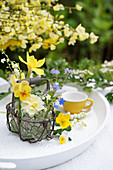Cups with spring blossoms: horned violets, daffodils, forget-me-nots, lilies of the valley, and buttercups