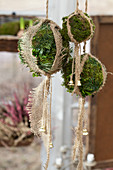 Moss balls with jute as a Christmas decoration
