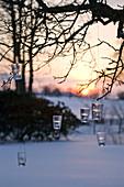 Hängende Laternen am Baum in verschneitem Garten