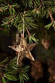 Stern aus Baumrinde hängt am Kiefernzweig