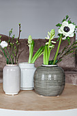 Spring flowers in ceramic vases: anemone, waxflower, hyacinths, star-of-Bethlehem, lisianthus and cherry branch