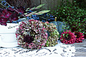 Autumn arrangement of hydrangea and dahlia wreaths, blue-green pumpkin, branch of sloes and gladioli