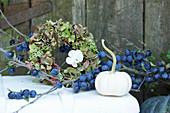 Herbst Arrangement mit Schlehenzweig, Kranz aus Hortensienblüten und weißer Kürbis