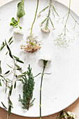 Various flowers on white plate