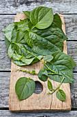Basella alba or Malabar spinach leaves on cutting board on grey wood