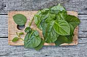 Green Basella alba or Malabar spinach leaves on cutting board on grey wood top