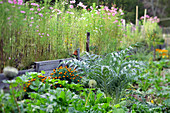 Vegetables and summer flowers in organic garden
