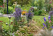 Summer flower beds in allotment garden, lavender bushes tied together