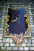 Sunken pond with colourful pebbles