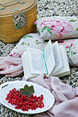Picnic basket, Cushions with a floral pattern, book and red currants