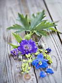 Lila und blaue Blüten vom Rittersporn auf Holzuntergrund