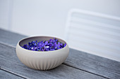 Bowl with violet flowers