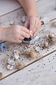 A child's hands playing with flower seeds