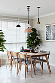 Pendant lamps in dining area and houseplants next to window