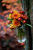 Chrysanthemums and everlasting flower buds in small bottle hanging from tree