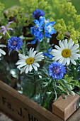 Posies of daisies, cornflowers, delphinium and lady's mantle