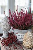 Autumn arrangement of rose hips, heather and terracotta pine cones