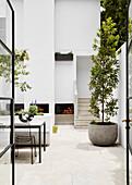 Innenhof mit weißen Wänden und Pflanze