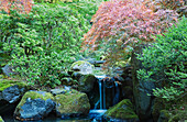 Waterfall and Bridge in Japanese Garden.  Portland, Oregon, USA