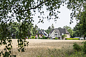 Houses along the green outskirts of Hittfeld, Seevetal, Niedersachsen, Germany