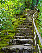 Outdoor Stone Stairway, Portland, Oregon, USA