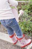 Kind giesst Kräuter im Garten