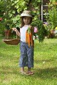 Kleines Mädchen hält Korb und Möhren im Garten