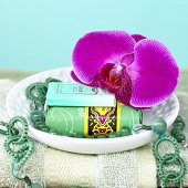 Orchid on soap dish