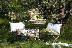 Laid garden table under an apple tree