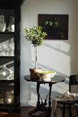French-style living room with little olive tree on old bistro table