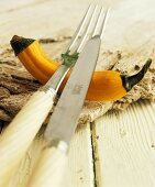 Squash used as knife rest