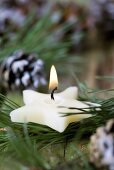 Star-shaped candle among pine branches and cones