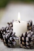 Burning candle in a ring of sugared fir cones