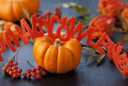 Pumpkin, rowan berries and Halloween garland