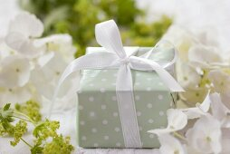 Parcel among hydrangeas and lady's mantle