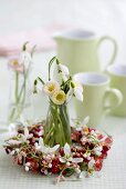 Small wreath with bellis and snowdrops