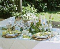 Festlich gedeckter Tisch zu Weinprobe im Freien