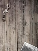 Antlers with edelweiss and post card on a wood background